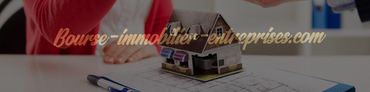 bourse-immobilier-entreprises.com